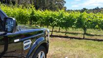 Melbourne Shore Excursion: Small-Group Yarra Valley Wine Tasting Day Trip, Melbourne