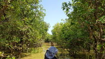 Kompong Phluk Village boat trip half day private tour in Siem Reap, Siem Reap, Private Sightseeing ...