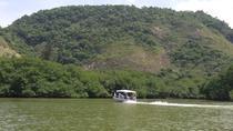 Sightseeing Boat Tour of Marapendi Lake Including Lunch , Rio de Janeiro, Day Cruises