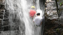 Tijuca National Park Hike and Waterfall Rappelling, Rio de Janeiro, Private Sightseeing Tours