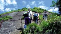 Tijuca Peak Hike in Rio de Janeiro, Rio de Janeiro, Hiking & Camping