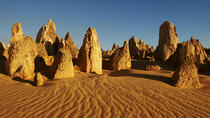 Pinnacles Day Trip from Perth Including Yanchep National Park, Perth, 4WD, ATV & Off-Road Tours