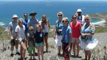 Private St Maarten Tour: Snorkeling, Birdwatching, History or Nature
