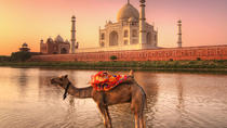 Private Tour: Full-Day Agra and Jaipur Tour from Delhi , New Delhi, Private Day Trips
