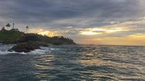 4-Day Sri Lanka Coast Tour, Colombo, Multi-day Tours