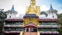5 Day Sightseeing Tour In Sri Lanka For Groups In A Private Coach (Min -7 Pax), Colombo, Cultural...