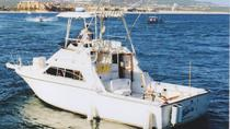 Fish On 33-Foot (10-Mt.) Tiara, Los Cabos, Private Sightseeing Tours