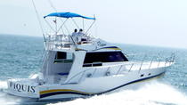 Fishing in Puerto Vallarta Aboard the 'Piquis' Boat, Puerto Vallarta, Fishing Charters & Tours