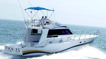 Fishing in Puerto Vallarta Aboard the 'Piquis' Boat, Puerto Vallarta, Fishing Charters & Tours