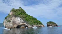 Half Day Sightseeing & Snorkeling Tour With Buffet Lunch and Open Bar, Puerto Vallarta, Day Cruises