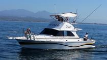 Private Fishing Boat Tour Aboard the Nicole in Puerto Vallarta, Puerto Vallarta, Day Cruises