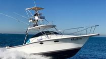 Private Fishing Charter Dora 28' Boat, Puerto Vallarta, Fishing Charters & Tours