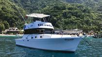 Private Fishing Trip 38' - 42' boats, Puerto Vallarta, Fishing Charters & Tours