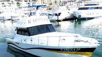 Private Tour: Fishing Tour Aboard the 'Karina II' , Puerto Vallarta, Day Cruises