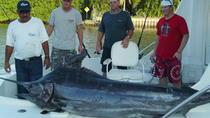 Shared Fishing Trip in Puerto Vallarta and Nuevo Vallarta, Puerto Vallarta, Fishing Charters & Tours