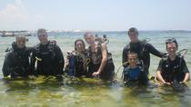 Introductory Scuba Diving Adventure, Panama City Beach, Scuba Diving