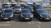 Private Transfer from Jeju International Airport to Jeju Hotels, Jeju, Airport & Ground Transfers