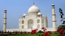 5-Nights Delhi, Jaipur, Ranthambore Tigers and Taj Mahal Private Tour, New Delhi, Multi-day Tours