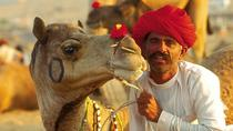 Day Trip to Pushkar from Jaipur, Jaipur, Private Sightseeing Tours