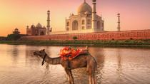 Private 7-Night Tour of the Golden Triangle in Rajasthan from Delhi to Udaipur, Jaipur, Multi-day ...