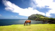 Private Full Day Tour of UNESCO Heritage Sites in East Jeju Island, Jeju, Full-day Tours
