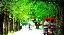 Private Full Day Tour to Nami Island and Free style Seoul city tours, Seoul, Full-day Tours