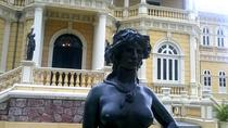 A Manaus Overview and Meeting of the Waters - Half Day Tour, Manaus, Private Sightseeing Tours
