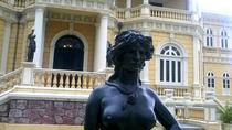 Private Tour: Manaus Overview City and Meeting of the Waters Short Tour, Manaus, Private ...
