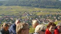 Private Alsace Villages and Wine Tour from Breisach on your Rhine River Cruise, Strasbourg, Wine...