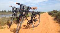 Ria Formosa National Park Bike Tour, Faro
