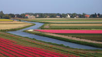 Tulip Bike Tour Zuid-Kennemerland, Haarlem, Bike & Mountain Bike Tours