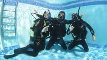 Diving Course in Playa de las Americas, Tenerife, Scuba Diving