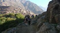 Excursion d'une journée à Imlil et dans l'Atlas au départ de Marrakech, Marrakech, Day Trips