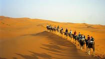Overnight Desert Trip from Marrakech with Camel Ride, Marrakech, Overnight Tours