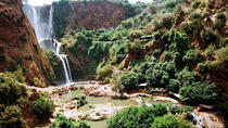 Private Guided Day Trip to Ouzoud Waterfalls from Marrakech, Marrakech, Private Day Trips