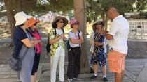Full Day Ephesus Tour, Kusadasi, Private Sightseeing Tours