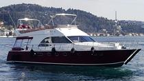 Private Bosphorus Boat Trip and Old City Tour for Layover Passangers, Istanbul, Walking Tours