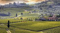 Chianti Wine Tour with Siena - Private Driving-guided Tour from Florence, Florence, Ports of Call ...