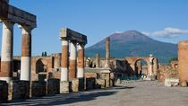 Tour giornaliero privato di Pompei ed Ercolano, Sorrento, Private Sightseeing Tours