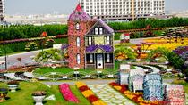 Half-Day Dubai Butterfly Garden and Miracle Garden Tour, Dubai, Half-day Tours
