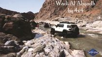 Private Day Tour: Wadi Al Abyadh by 4x4 from Muscat, Muscat, 4WD, ATV & Off-Road Tours