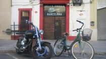4-Hour Guided Bike Tour in Barcelona, バルセロナ