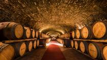 Chianti VINARIUM Tour from Rome, Florence, Day Trips
