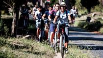 Bike Tour privato di 6 ore: Appian Way e Aqueducts Park, Roma, Tour privati