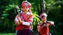 Overnight Sapa Trekking Tour from Hanoi with Homestay, Hanoi, Overnight Tours