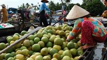 Mekong Delta 3-Day And Speed Boat To Cambodia, Ho Chi Minh City, Jet Boats & Speed Boats