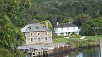 Pahia Shore Excursion: Private Half-Day Bay of Islands Tour, Bay of Islands, Ports of Call Tours