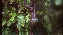 Kpalime- und Wald-Tagestour ab Lome, Lome, Day Trips