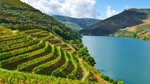 Douro Valley Wine Private Tour with Wine Tasting from Porto, Porto, Private Sightseeing Tours