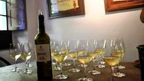 Setubal Peninsula Wine Tour - Sesimbra Azeitao and Arrabida Private Tour, Lisbon, Private ...